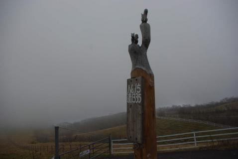霧降標識15