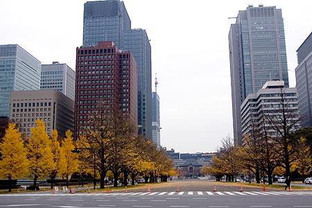 東京駅遠景