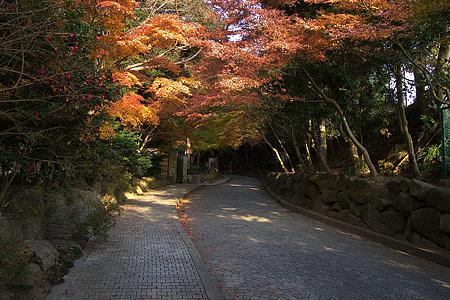 鎌倉文学館-1