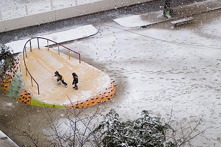 雪でも子供は遊ぶ