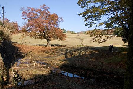 奈良行き-5
