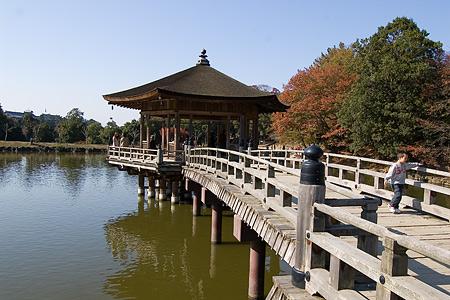 奈良紅葉風景-3