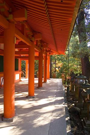奈良紅葉風景-5
