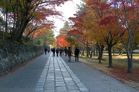 奈良紅葉風景-7