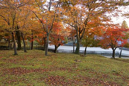 奈良紅葉風景-8