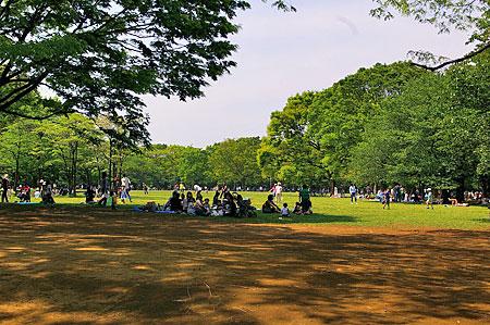 代々木公園風景-3