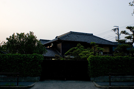 天王川公園周辺-12