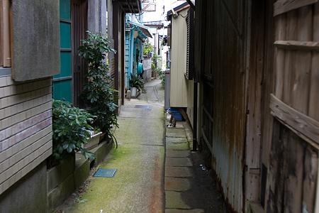 篠島2-4