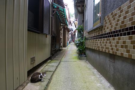 篠島2-5