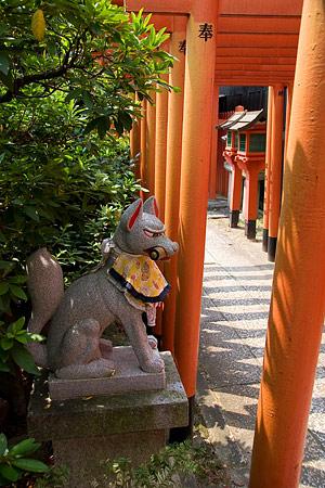 稲荷社の狐と鳥居