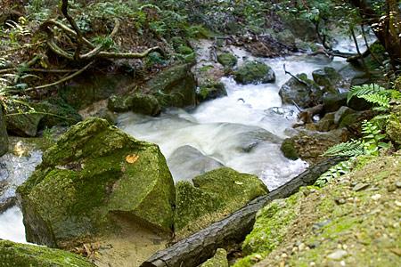 水かさが増す海上の小川