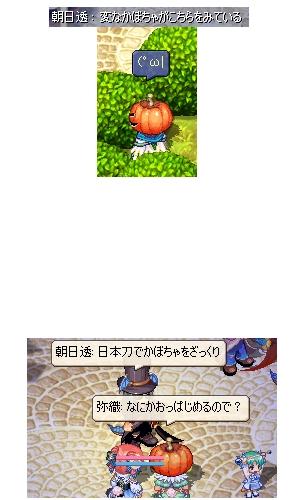 かぼちゃ鍋だぜウヒャフー