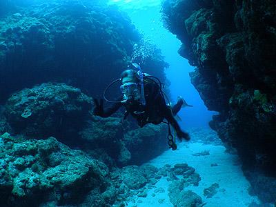 沖縄 ダイビングライセンス取得