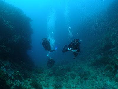 大山 本島ボートダイビング