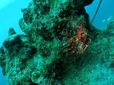 沖縄 青の洞窟