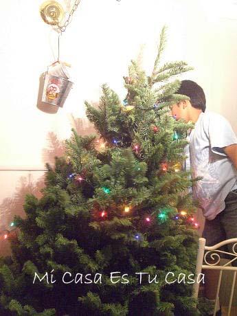 Xmas Tree 1 copy