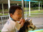 20080713_09.jpg