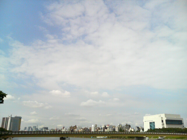 DSC00611.jpg