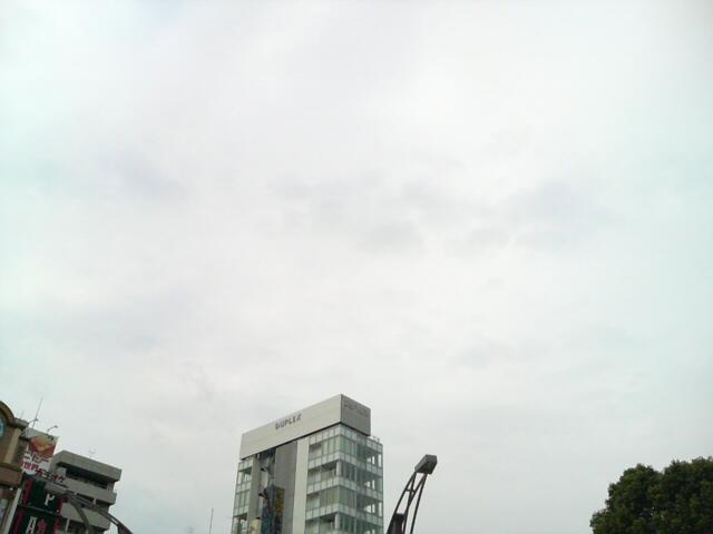 DSC00675.jpg