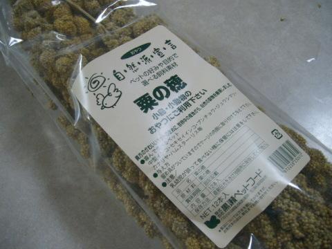 本日購入の粟穂