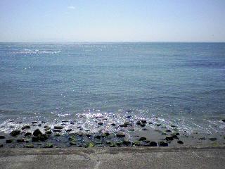 080321海