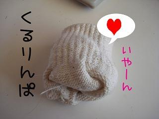 DSC04932.jpg