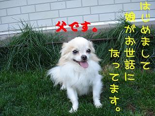DSC05460.jpg