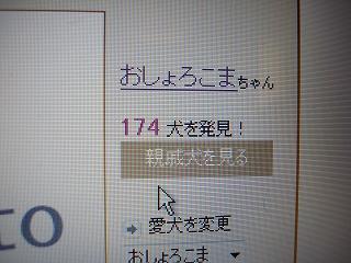 DSC05462.jpg