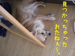 DSC05633.jpg