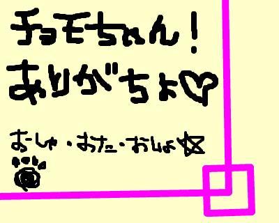 snap_osyamanbe1220_20085492647.jpg