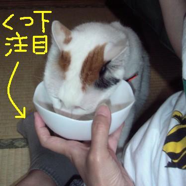 あずきちゃん)