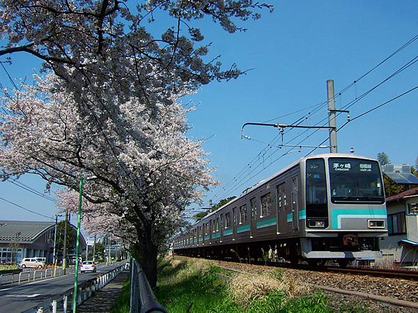 Tc205-505-1.jpg