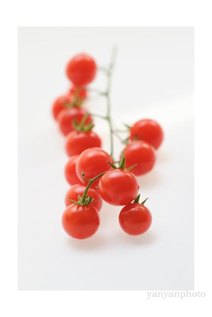 マイクロトマト
