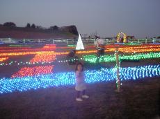 2007-11-23-5.jpg