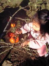 2007-11-24-1.jpg
