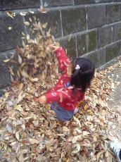 2007-11-27-2.jpg