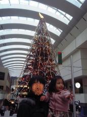2007-12-22-1.jpg