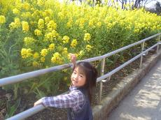 2008-3-28-1.jpg