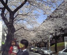 2008-3-29-3.jpg