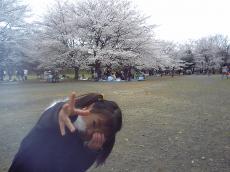 2008-4-1.jpg