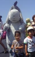 2008-5-27-1.jpg
