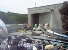 2008-6-24-7.jpg
