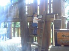 2008-8-21-1.jpg