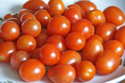 ミニトマト091025