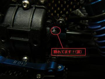 P1030795.jpg