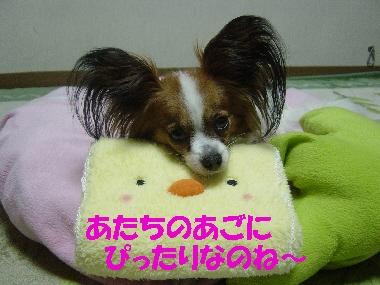 おみやげ02