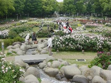 うつぼバラ園02