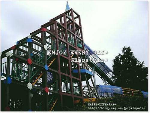 20080711c.jpg