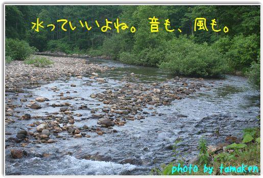 明け方の川辺