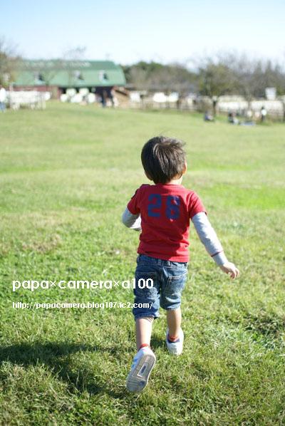 20081206-01-02.jpg
